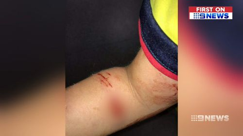 190603 Adelaide dog attack parents warnings local councils dangerous animals pets news South Australia