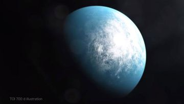 An illustration of the newly discovered planet, TOI 700, which is 100 light years from Earth.