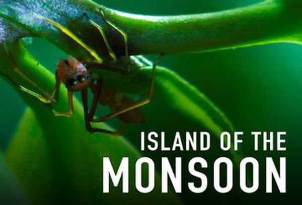 Island of the Monsoon