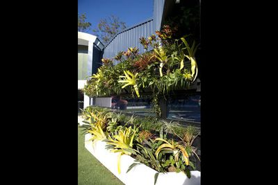 """Something for the housemates with green thumbs...<br/><br/><b><a href=""""http://www.bigbrother.com.au"""" target=""""_blank"""">Visit the <i>Big Brother</i> official website</a></b>"""