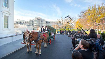 President BarackObama will light the National Christmas Tree in the Ellipse near the White House next week. (AAP)