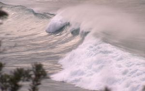 Sydney coastline battered by strong winds and wild surf