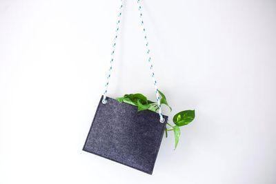 "<strong>Felt Hanger, $45,<a href=""https://urbanedenco.com/collections/all/products/felt-hanger"" target=""_blank"">Urban Eden</a></strong>"