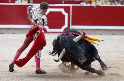 A Toreador tangles with a bull in the packed arena
