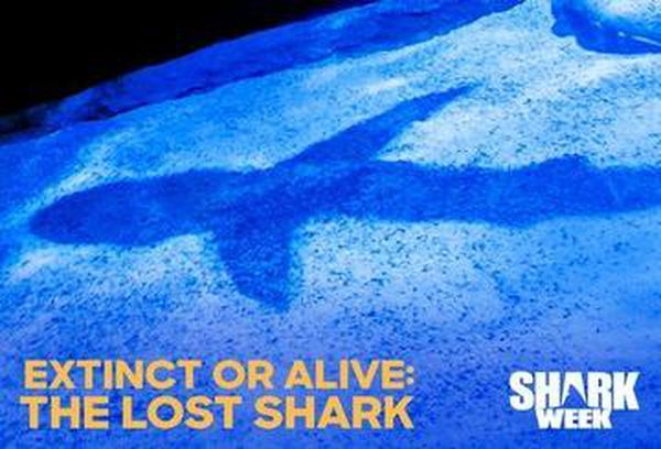 Extinct Or Alive: The Lost Shark