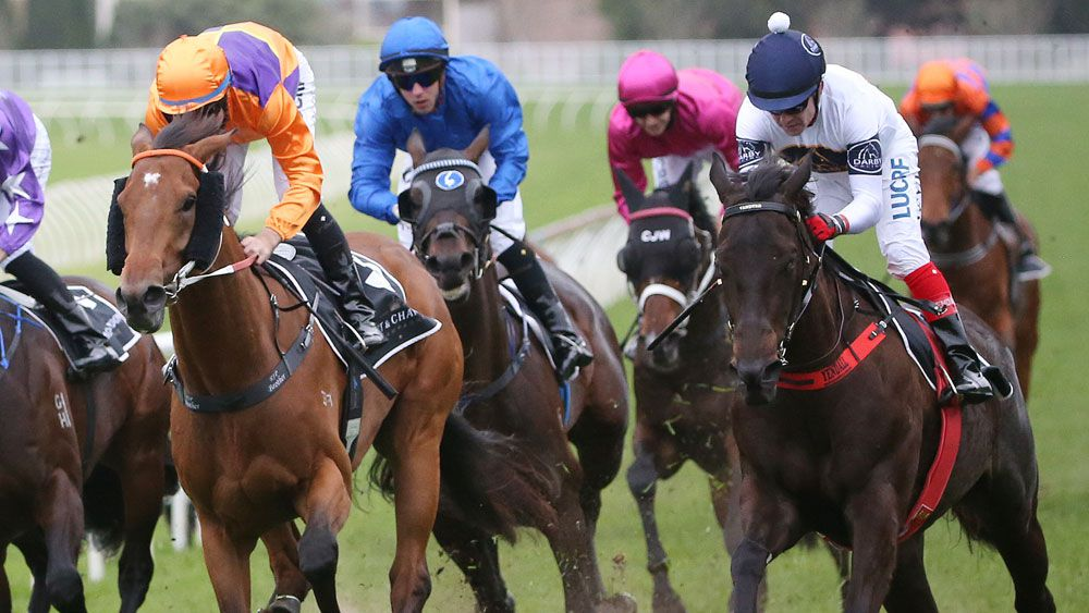 Yankee Rose scored a storming win in the Spring Champions Stakes. (AAP)
