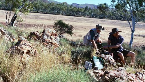 Dr Adrian Brown and Michael Storrie-Lombardi take spectrometric readings at the famous Trendall locality, Pilbara, Western Australia. The mineralogy at this site could contain important parallels to that of Jezero crater on Mars.