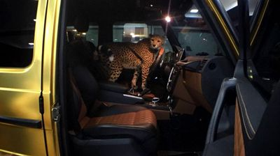 One image even shows a cheetah strapped in the passenger seat of his Mercedes jeep. (Source: Instagram)