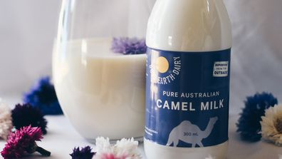 Camel milk is the next big thing