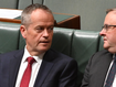 Shorten breaks silence on Labor leadership after election loss