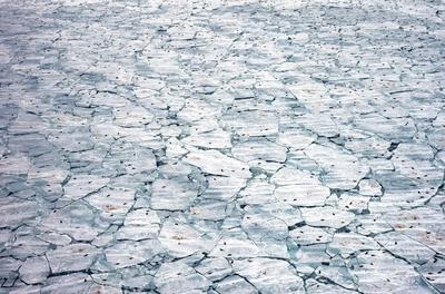 'Nursery meltdown'. Winner - Oceans: The bigger picture.