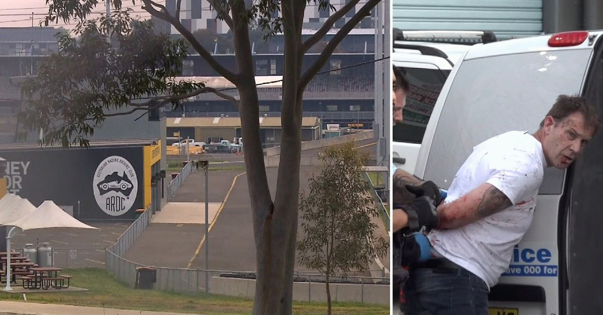 Paramedic seriously injured in alleged road rage attack after breaking up fight – 9News