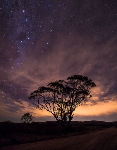 Night sky over River Murray International Dark Sky Reserve