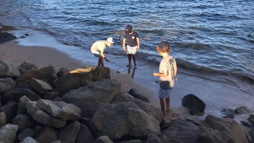 Jimmy and his friends were on the beach when they spotted the goanna. (Supplied)
