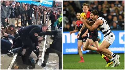 Violent brawl erupts between AFL fans after Geelong-Melbourne match
