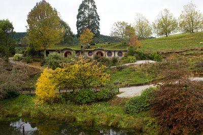 Woodlyn Park, Waitomo, Waikato