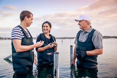 Coffin Bay oyster tours