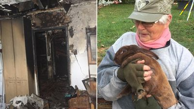 Boy saves family and rabbit from house fire