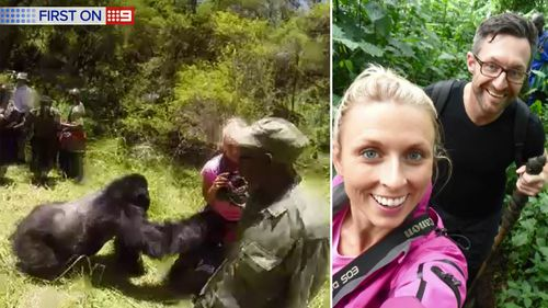 The gorilla charging (left), and Gemma Cosgriff with husband Damian (right). (9NEWS)