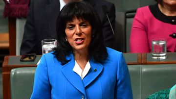 Julia Banks is the latest politician to become engulfed in the citizenship crisis (AAP Image/Mick Tsikas).