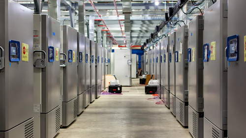 "This photo provided by Pfizer shows part of a ""freezer farm,"" a football field-sized facility for storing finished COVID-19 vaccines, under construction in Kalamazoo, Michigan. Pfizer's experimental vaccine requires ultracold storage, at about -70°C.  (Jeremy Davidson/Pfizer via AP)"