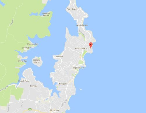 The leafy suburb of Avalon is located on Sydney's northern beaches. (Google Maps)