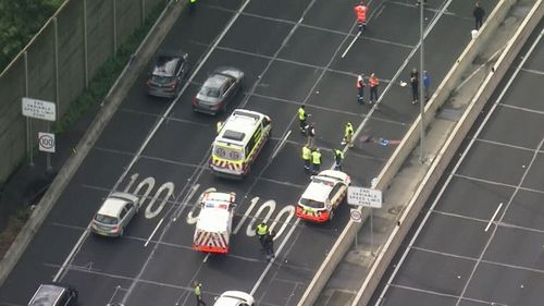 A man has died after he was struck by a ute on Sydney's M2 motorway.