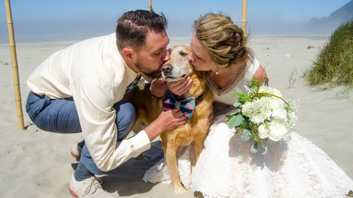 US bride takes terminally ill dog to her beach wedding as final gift