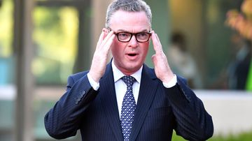 Christopher Pyne's has a new defence-focused role with professional services giant EY.