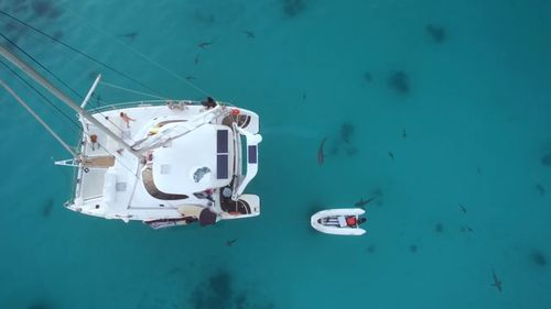 At one point the crews' catamaran was surrounded by sharks.