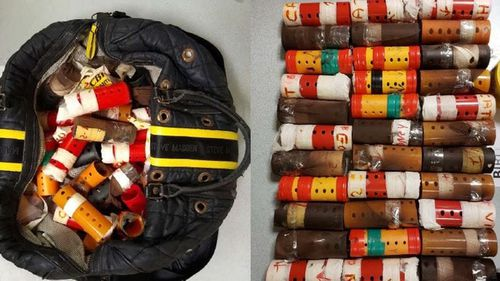 Man caught at JFK smuggling 34 bird inside hair curlers
