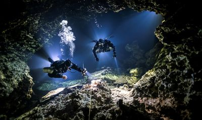 "Up and Coming Underwater Photographer of the Year, Most Promising British Underwater Photographer: ""Tying In"""