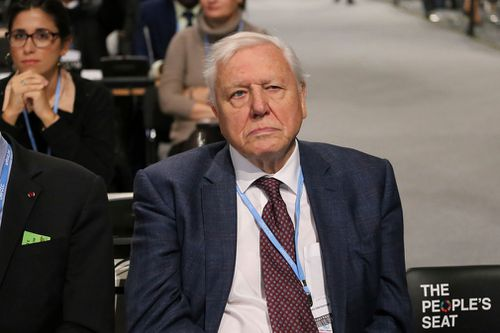 """If we don't take action, the collapse of our civilisations and the extinction of much of the natural world is on the horizon,"" Sir David Attenborough said."