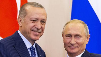 Putin sets up demilitarised zone in Syria