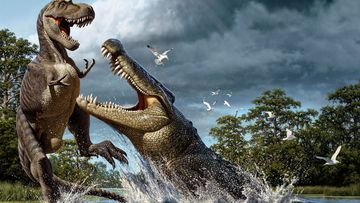 Earth once home to 'terror crocodiles'