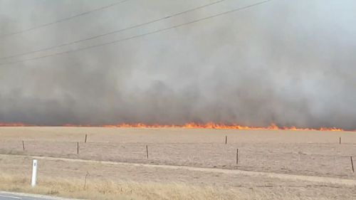 The fires burned on a fiercely hot SA day. (9NEWS)