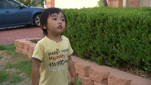 The toddler managed to stray 500m away from the property before being spotted by a local resident (Supplied).