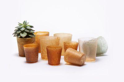 Shellworks vases
