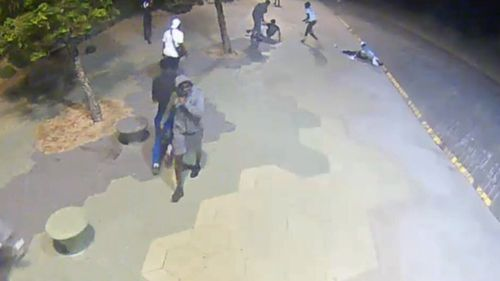 All of the suspects are described as being African in appearance.