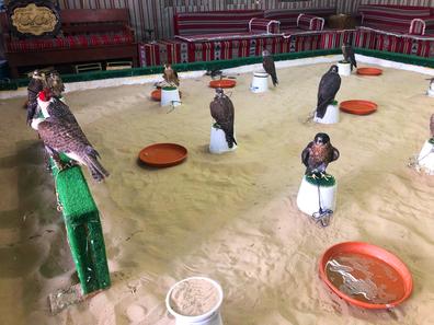 Doha souq falcon