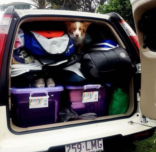 'Bring on the cold' Ms Walker posted as she packed up her life on the Sunshine Coast for her Tasmanian adventure in June 2016.