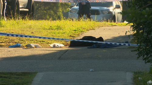 190611 NSW Sydney police man stabbed Sadleir Liverpool crime news Australia