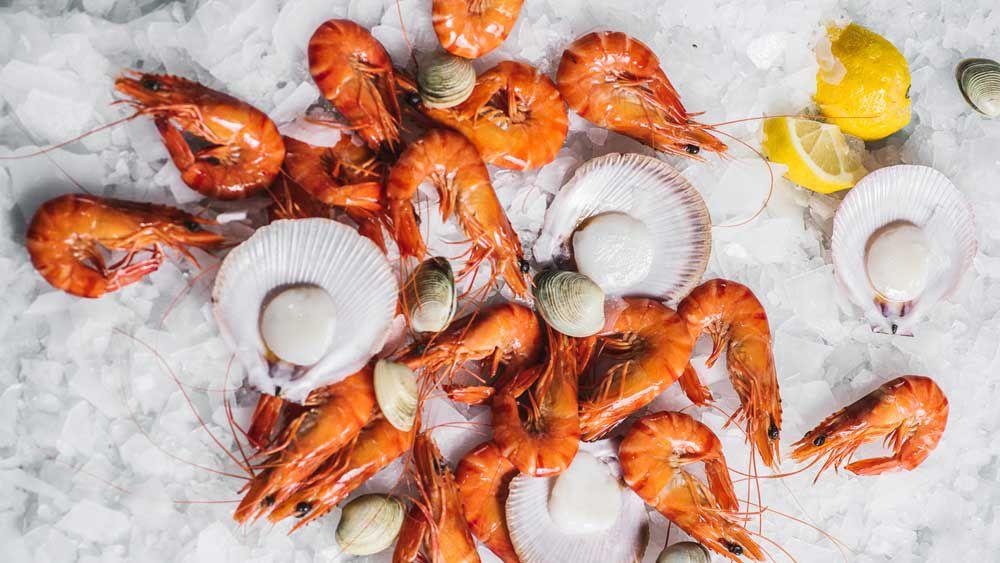 Sydney Fish Markets. Image: Alana Dimou
