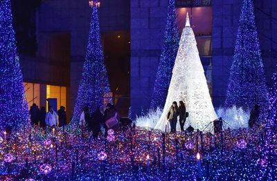 A Starlight Garden is entertains people in Tokyo with 180,000 blue and white LED lights. (Yoshikazu Tsuno/AFP/Getty)