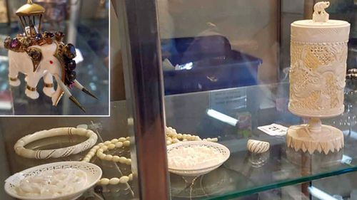 Ivory for sale in Mt Lawley, Western Australia. Photo: For the Love of Wildlife.