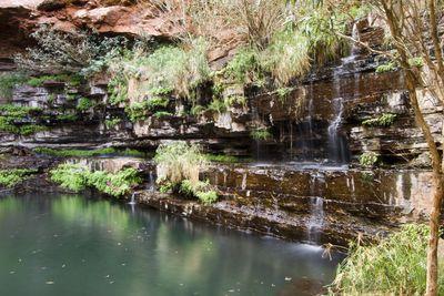 <strong>Fern Pool, Karijini National Park, WA</strong>