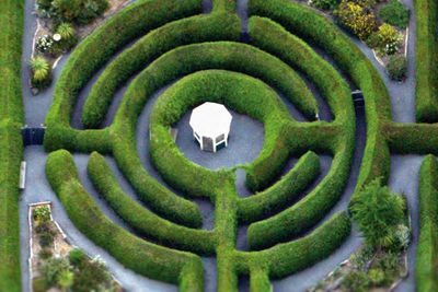 <strong>Glengarry Bush Maze, TAS</strong>