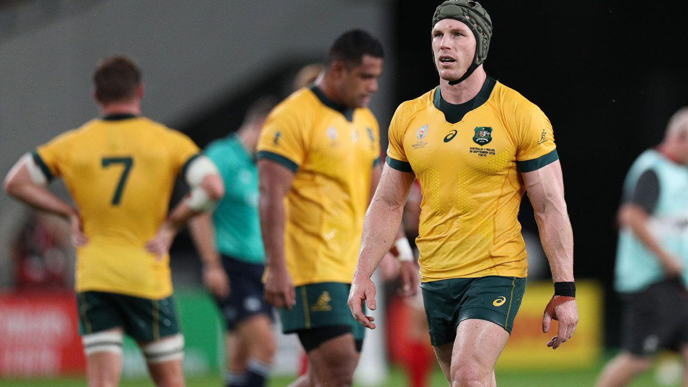 Wallabies fall to Wales