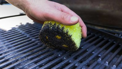 The game changing sponge that'll have you cleaning more than just the dishes
