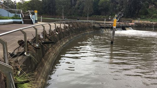Yesterday, the Parramatta weir broke its banks during the heavy rain.